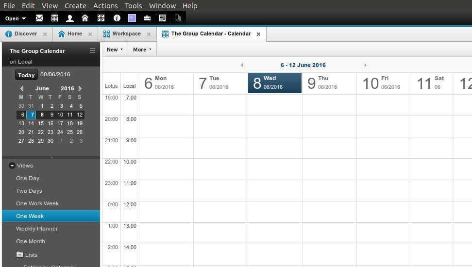 Figure 11: The newly configured Shared Calendar database, opening directly to the Calendar View